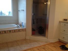 Piney Creek Estates Master Bathroom Remodel- Before